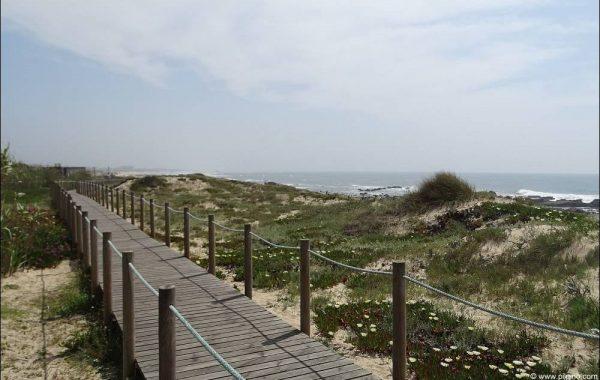 Holzstege am Strand
